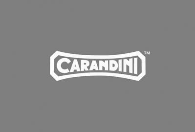 1c_Carandini